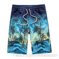 SSLR Men's Holiday Slim Quick Dry Beach Swim Trunks Blue B07F1BCM1R